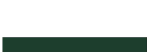 Satori Law Group Logo
